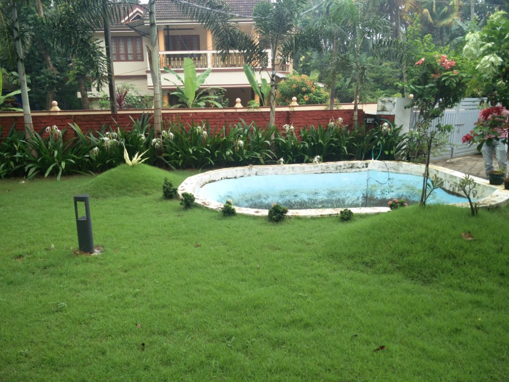 Koi fish pond renovation nedumbassery kochi for Koi pond builders near me