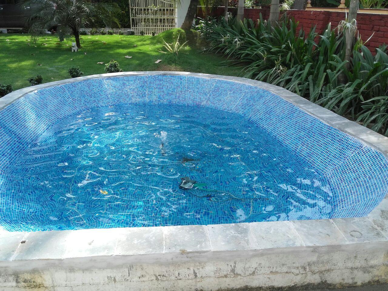 Koi fish pond renovation nedumbassery kochi for Starting a koi pond