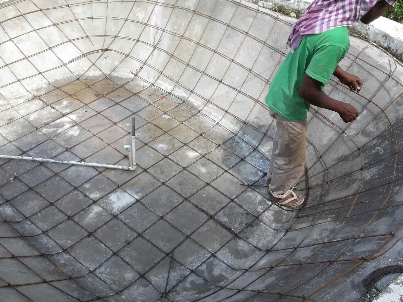 Koi Fish Pond Renovation Nedumbassery Kochi