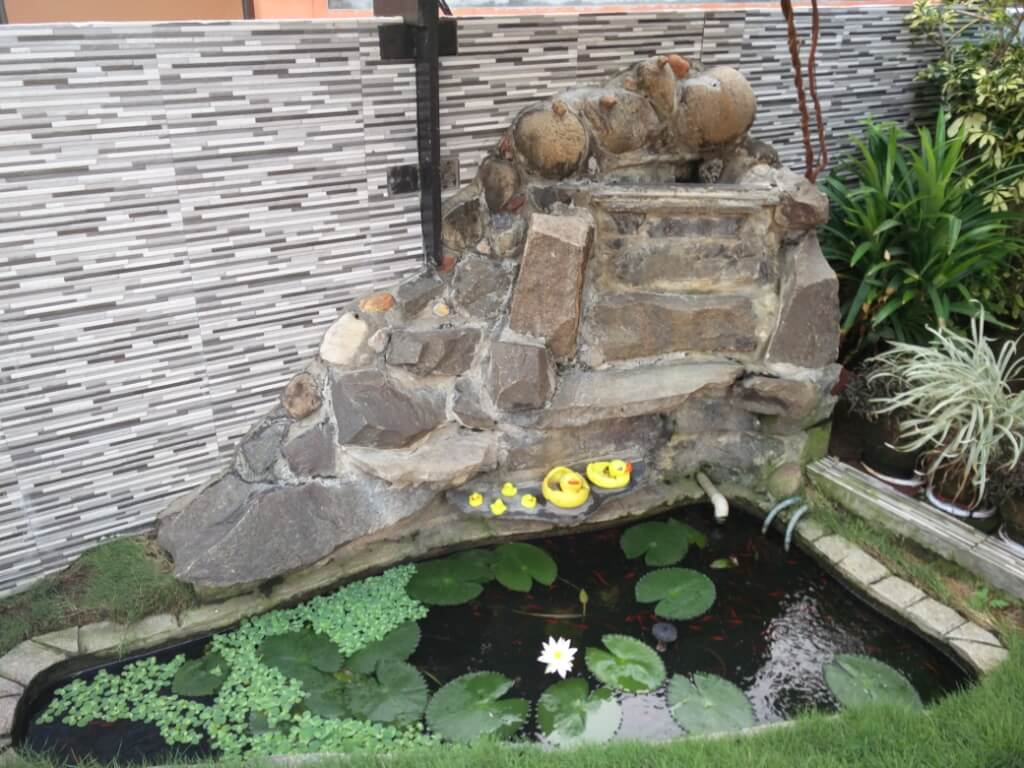Custom build low cost koi ponds waterfalls home for Koi pond installation cost