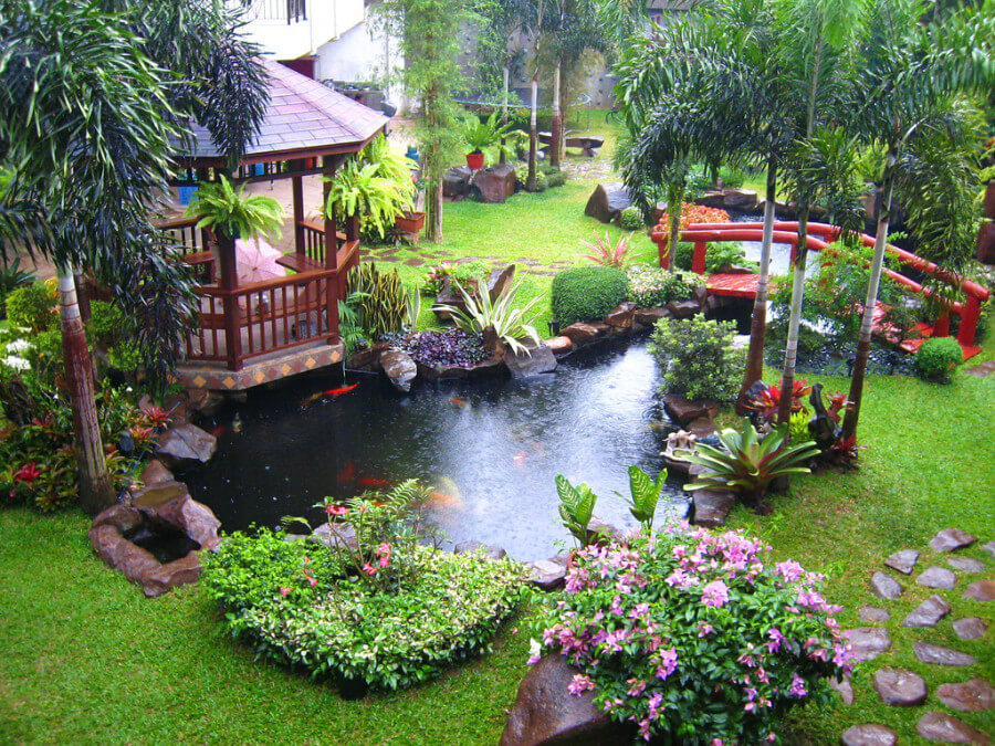 Fish Pond With Water Features