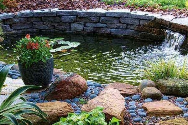 Fish Pond & Fountains